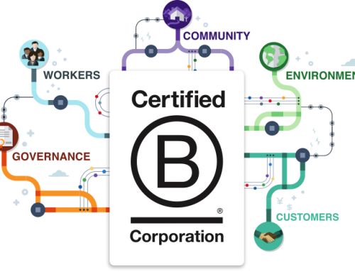 Why Your Business Needs to be B Corp Certified